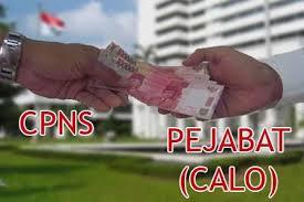 calo CPNS (1)