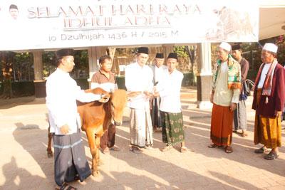 Bupati Sampang KH A. Fannan Hasib, senyerahan secara simbolis hewan qurban.