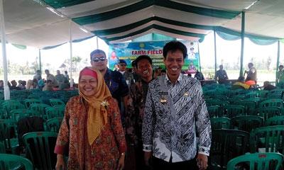 Bupati Bondowoso Drs H Amin Said Husni bersama Dirjen IKM Kemenperin Euis Saedah dan Direktur Keuangan Kementan Mulyadi Hendrawan usai acara Farm Field Day, Rabu (2/9).